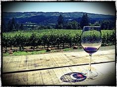 Frias Winery, Napa Valley.