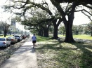 A runner heads down the St. Charles Avenue sidewalk in front of Audubon Park.