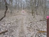 Dog Walk Hill comes between the creek crossing and the halfway point. Photo by Jen DeSalvo.