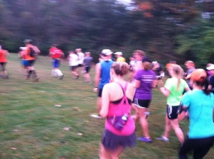 Start of the 2013 Farmdale Trail Run, which was actually held at Jubilee College State Park near Peoria, Ill.