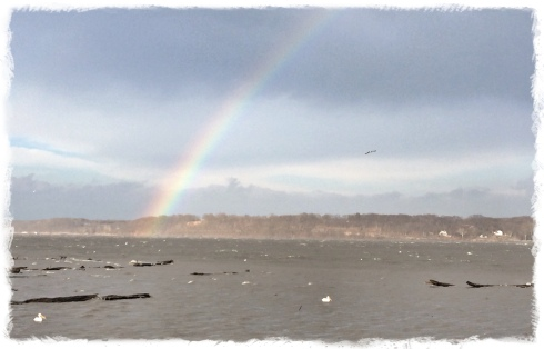 A rainbow stretches across the Mississippi River on a misty, windy day near Keokuk, Iowa. A strong east wind was stirring whitecaps on the river and keeping the pelicans grounded. The pending storm nearly kept me from my nightly run, but I'm glad I went ahead as planned. I would have regretted missing this scene.