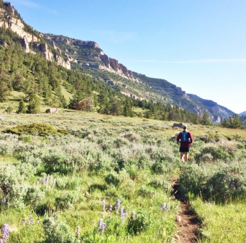 Rolling down the trail in the early miles of the Bighorn 50 trail run.