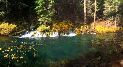 Gushing Springs emerges from the hillside about 2 miles south of the hatchery.