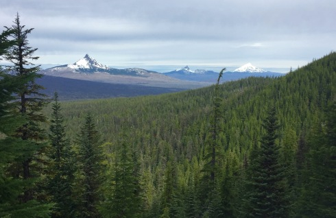 The peaks of Mt. Washington, Three Fingered Jack and Mt. Jefferson can be seen from the PCT on the way to South Matthieu Lake.